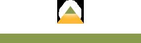Orangeburg logo